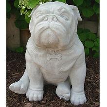 bulldog-600x600.jpg