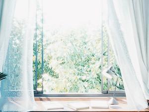 アネッタイ・アパートメント | Interior