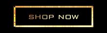 ShopNow-10.png
