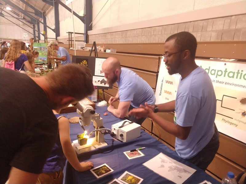 Outreach booths at the Great Insect Fair, 2019. In photo: Adam Rork & Dr. Kadeem Gilbert.