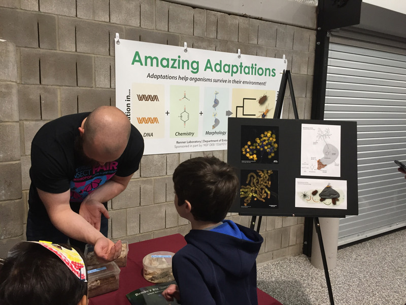 The Amazing Adaptations booth at the Great Insect Fair, 2018. In photo: Adam Rork.