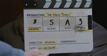 Trees_bts_1.png