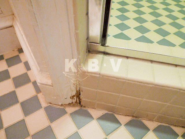 Coler Kitchen & 2 Bathroom Before Remodel_46