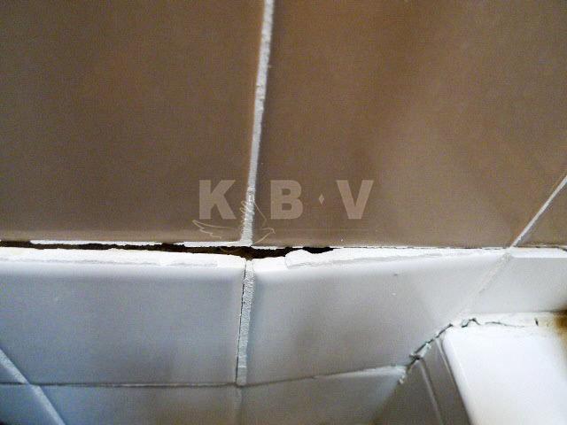Coler Kitchen & 2 Bathroom Before Remodel_23