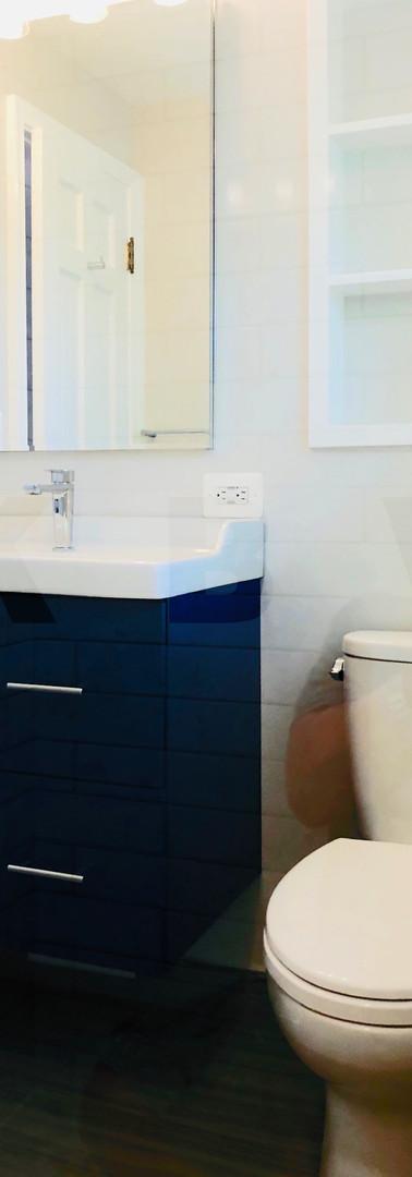 vanity toilet3.JPG
