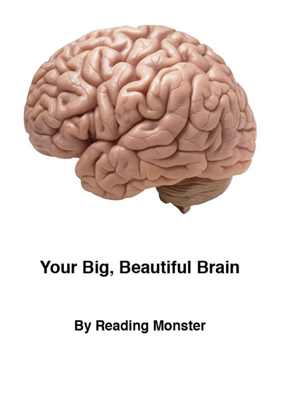 Your Big, Beautiful Brain uses brain facts with inspirational slogans to increase learning confidence in children.
