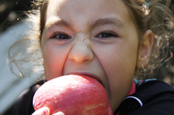 Ashley Loves Our Apples!