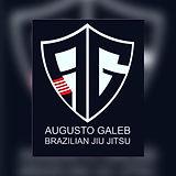 Galeb Brothers BJJ.jpg