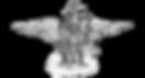 águia-PNG-1610X860.png