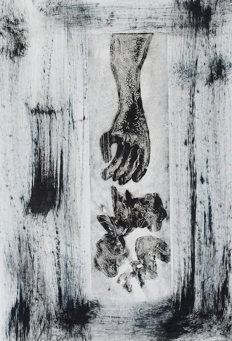 49,5 x 34 cm - IMG_0291