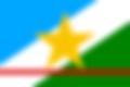 120px-Bandeira_de_Roraima.svg.png