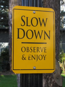 Slow Down – Vienna Waits…And So Does Your Task List