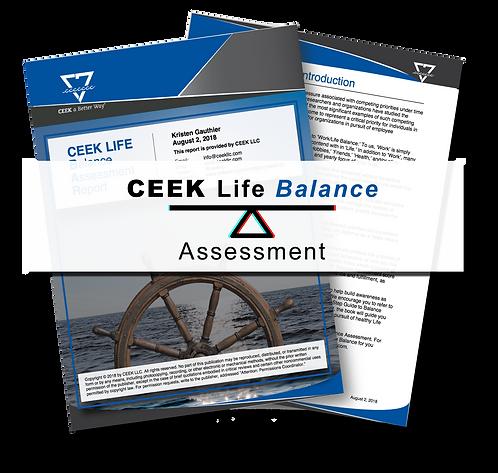 CEEK Life Balance Assessment