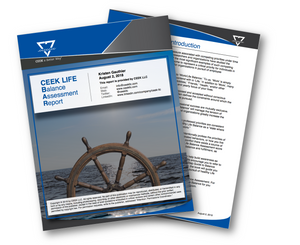 Life Balance Assessment Report Cover