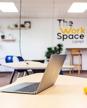 TATIANAMARIN_workspace_web0011.jpg