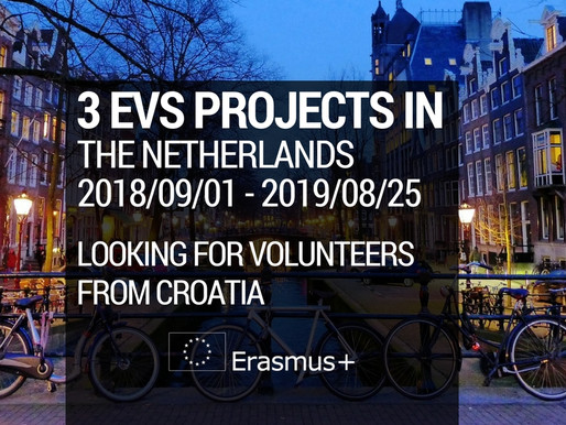 3 EVS Projects in The Netherlands