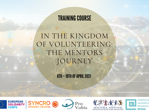 TRAINING COURSE│ONLINE│In the Kingdom of Volunteering: The Mentors Journey