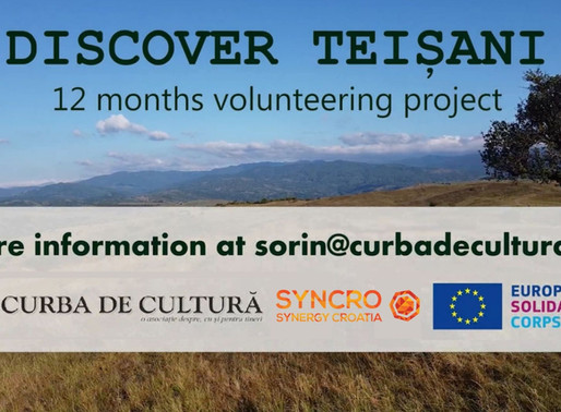 LONG-TERM VOLUNTEERING (ESC)│ROMANIA 🇷🇴│DISCOVER TEIȘANI