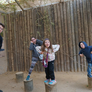 Monkeying around at the Barcelona Zoo