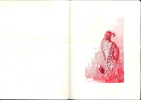 Many different pages of Sketchbooks-13.j