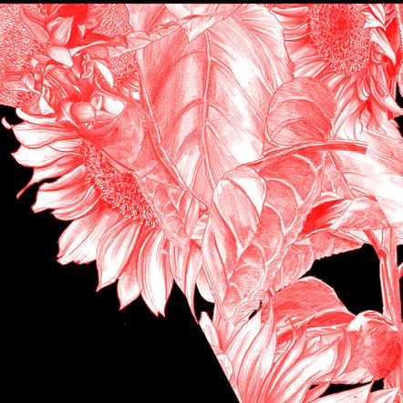 EDIT_Monogram_LV_110 x 110cm_100px_V02_Color 03_1.jpg