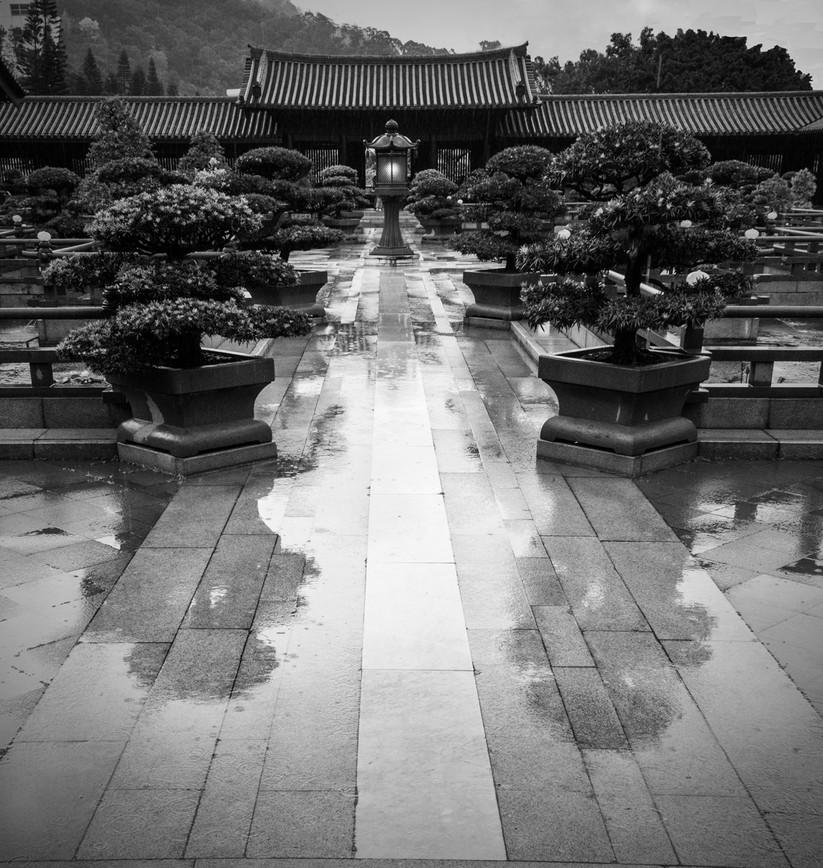 MONO - Wet Path by Julian Maitland (7 marks)