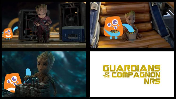 GuardiansOfTheCompagnonNRS - Kevin PEZ