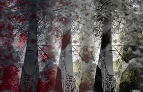 Shrouded Trees