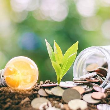 savingsOPT.jpg
