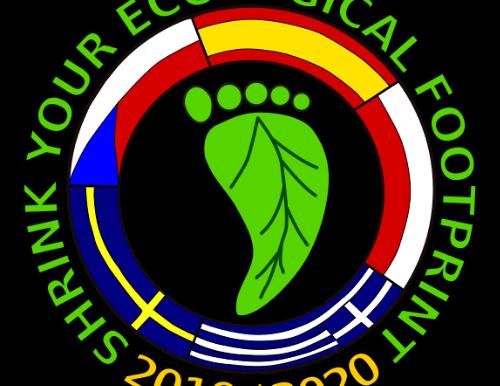 SYEF Logo