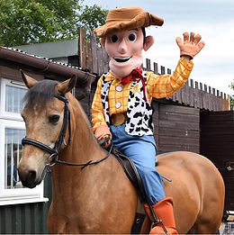 Toy Story-Woody-Hi Dee-cropped-IMG-20190