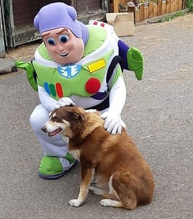 Toy STory-Buzz &biscuitmodified 1--IMG-2