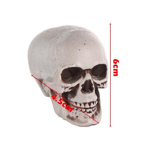 1PC Halloween Style All Size Human Skull Head Skeleton