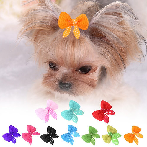 10 Pcs Headdress Products Fashion Pet Puppy Hairpin Flower