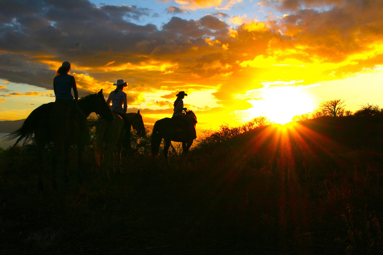 Horseback Riding Sunset