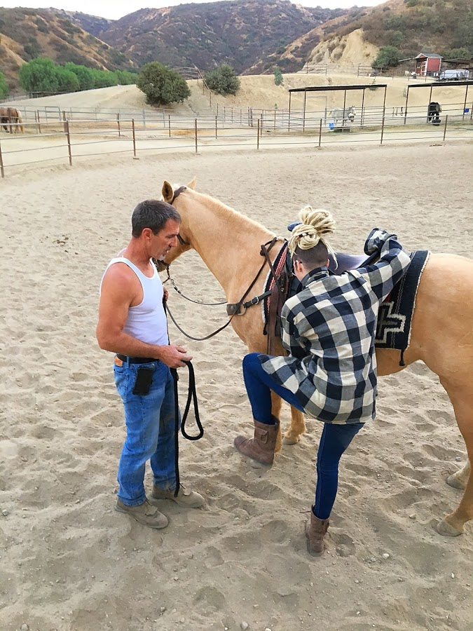 Chet Equine Therapy