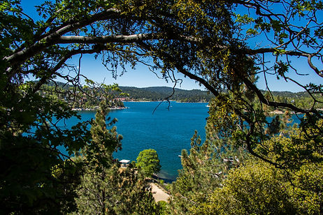 Lake Arrowhead Rehabilitaton Center