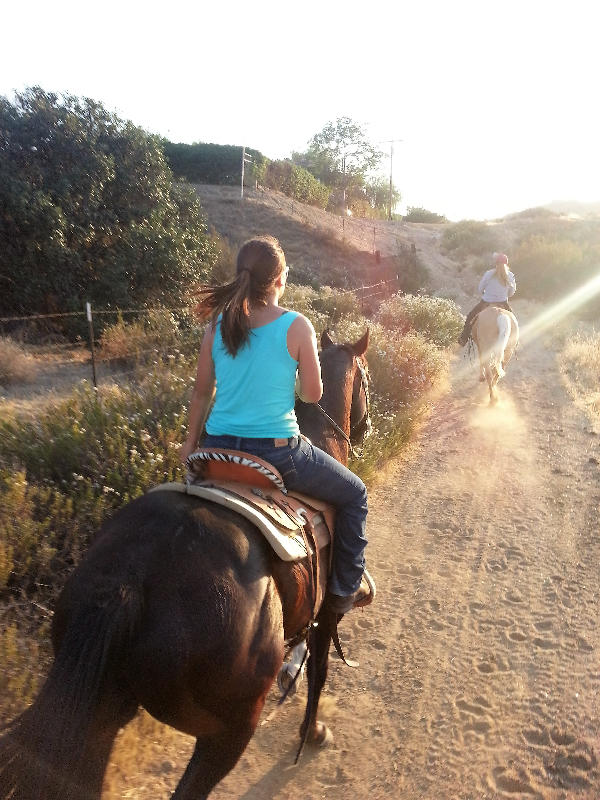 Sunset Riding