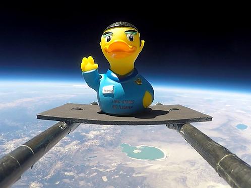 Vulcan Duck
