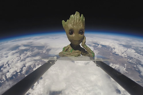 Baby Groot (flowerpot and tool holder)