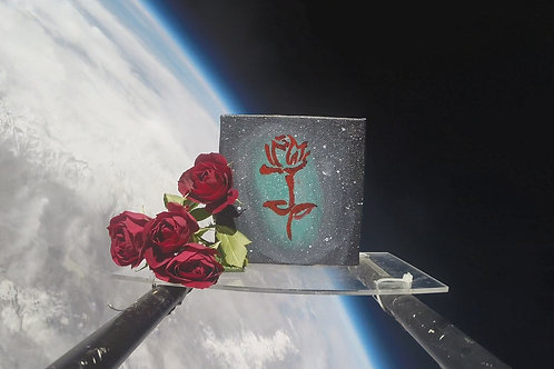 Cosmic Rose -- Original Painting