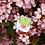 "Thumbnail: Love Letter Kermie Enamel Pin 1.25"""