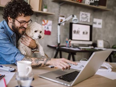 Fabrizio Construtora faz guia do home office em tempo de coronavírus