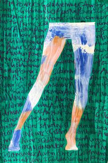 legs (25)