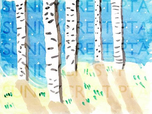 Mr. Brandt's Class - Bryce (Birch Trees)