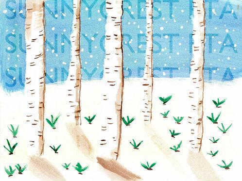 Mr. Brandt's Class - Alyssa (Birch Trees)
