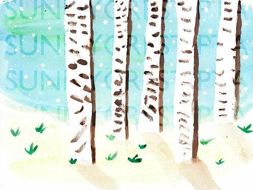 Mr. Brandt's Class - Landon (Birch Trees)