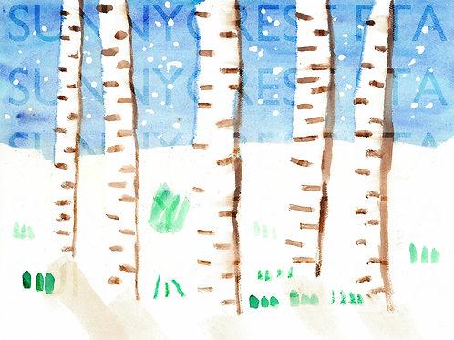Mr. Brandt's Class - Jackson (Birch Trees)