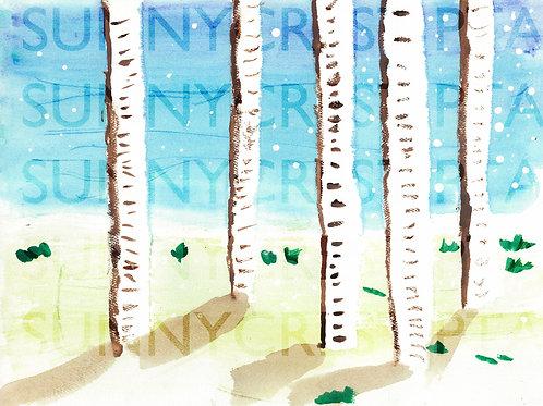Mr. Brandt's Class - Aiden (Birch Trees)