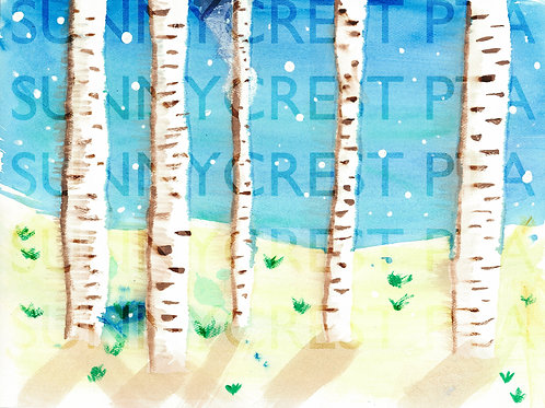 Mr. Brandt's Class - Cooper (Birch Trees)